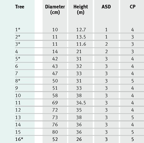 Variations de la densité du bois de Parkia velutina Benoist
